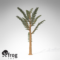 3d model xfrogplants pachypteris plant