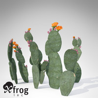3ds xfrogplants prickly pear plant
