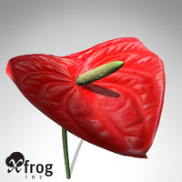 3d model xfrogplants flamingo lily plant