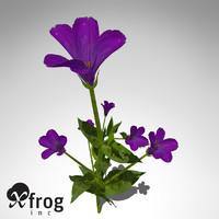 c4d xfrogplants lisianthus plant flowers