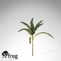 xfrogplants banana plant x 3d c4d