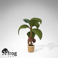 3dsmax xfrogplants banana plant x