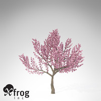 xfrogplants kanzan cherry tree 3ds