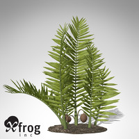 xfrogplants nipa palm plant 3d max