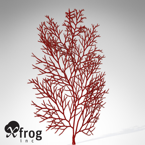 3d model of xfrogplants red sea fan - XfrogPlants Red Sea Fan... by xfrog