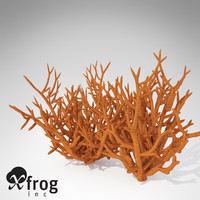 3d model xfrogplants birds nest coral