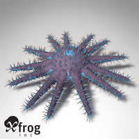 XfrogPlants Crown-of-Thorns Starfish