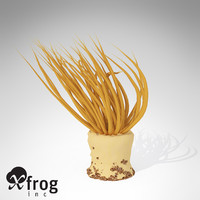 xfrogplants tube anemone animal 3d 3ds