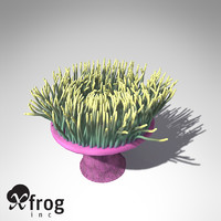 xfrogplants magnificent anemone animal 3d max