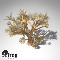 3d xfrogplants pulsing xenia plant model