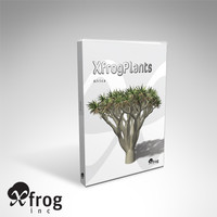 trees plants africa dvd 3d model