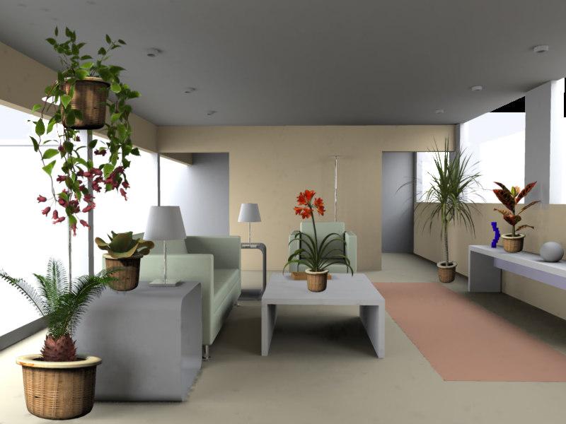 houseplants1.jpg