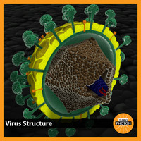 3d model virus structure