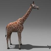 3ds giraffe