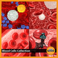 blood cells 3d 3ds