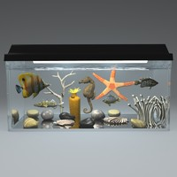 3d aquarium fishes seahorse starfish