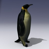 3ds max penguin bird