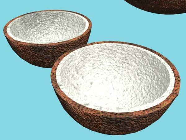3d model of coconut - Coconut... by zelal