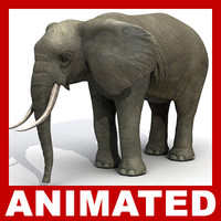 Elephant Rigged and Animated (High and Low Poly)