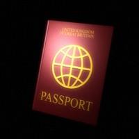 passport 3d model