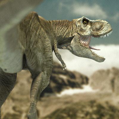 rex004.jpg