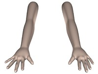 Human Arms with Hands