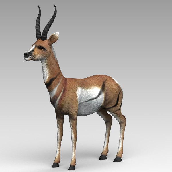 Antelope_01.jpg