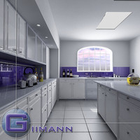 kitchen interior house 3d 3ds