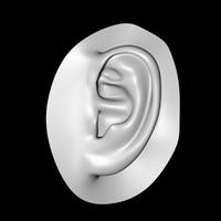 Human Ear.zip