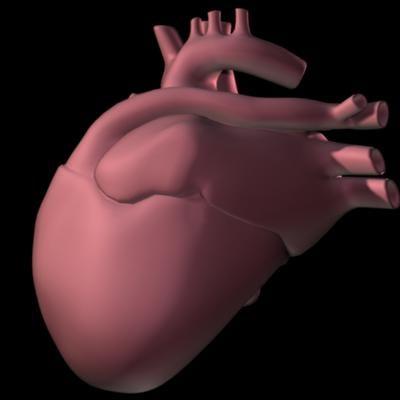 Heart_Angled-normal.jpg