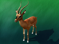 Impala_maya.zip