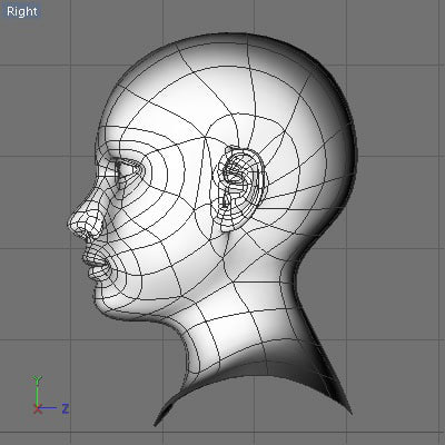 liv head reference 3d dxf - Liv... by Leah Apanowicz