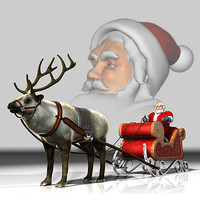 Reindeer with Sleigh and Santa