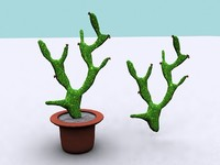 3d model of opuntia cactus