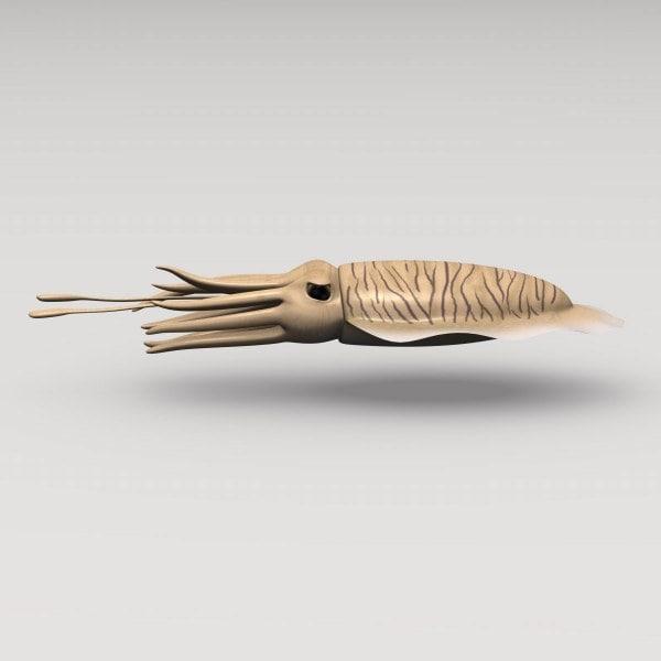 cuttlefish_render.jpg