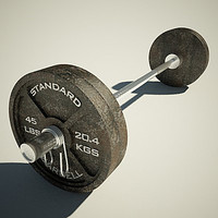 maya olympic weight bench barbell