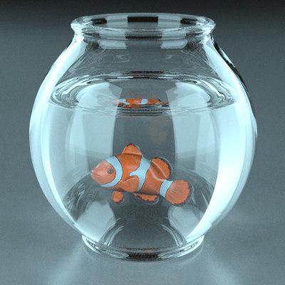 aquarium+fish