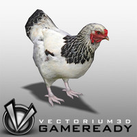 Animals - Game Ready - Hen