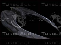 BSG_RaiderTurboSquid.max