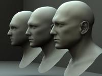 3 Male Heads/ Busts