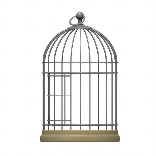 bird cage 3d 3ds - bird cage... by 3DMB: www.turbosquid.com/3d-models/bird-cage-3d-3ds/384798