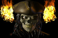 lwo talking pirate skull character