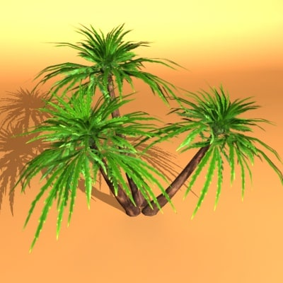palm max - Palms of the world... by graph.Maikel