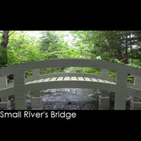 bridge small cross max free