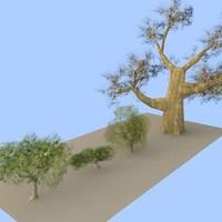 trees flora 3d max