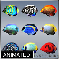 3ds max tropical fishes