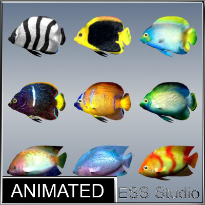 tropical_fishes_pack4_allrender.jpg