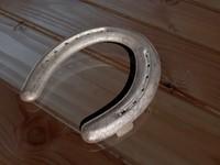 3dsmax horse shoe