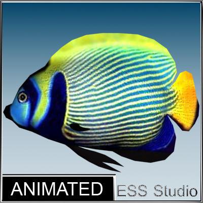 fish_8_render.jpg