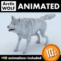 3d model of wolf skinned animation